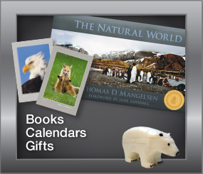 Books | Calendars | Gifts