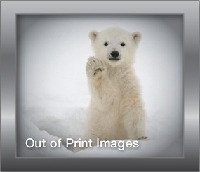 Out of Print Images
