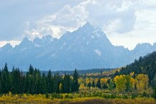 October's Gold - Grand Tetons
