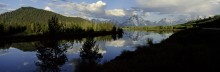 Summer on the Oxbow Bend