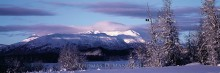 Christmas on the Chilkat
