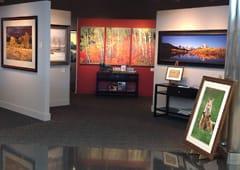 Gallery Locations